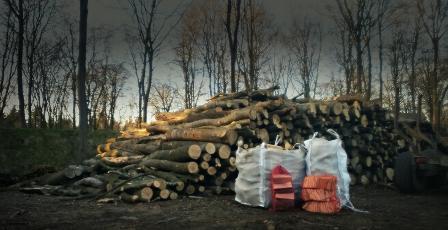 Bags of logs logs